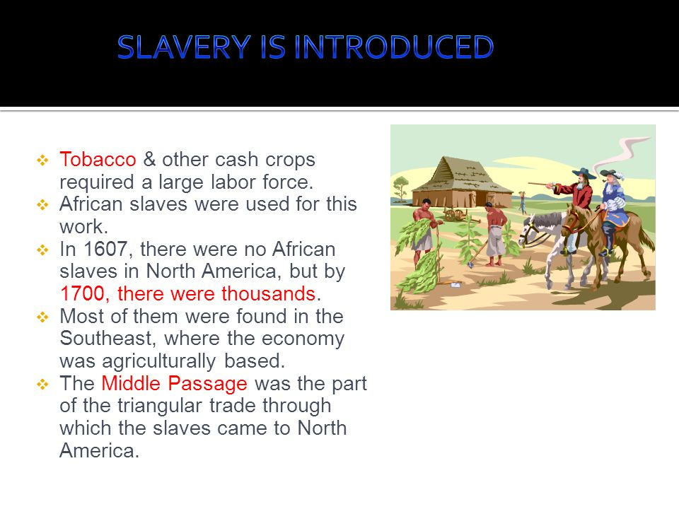 Tobacco & other cash crops required a large labor force. African slaves were used for this work. In 1607, there were no African slaves in North Americ