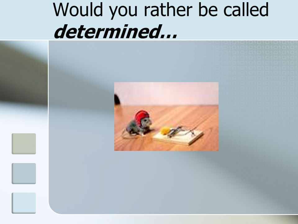 Would you rather be called determined…