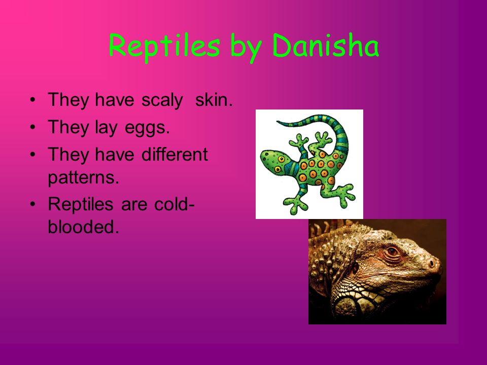 Reptiles by Danisha They have scaly skin. They lay eggs. They have different patterns. Reptiles are cold- blooded.