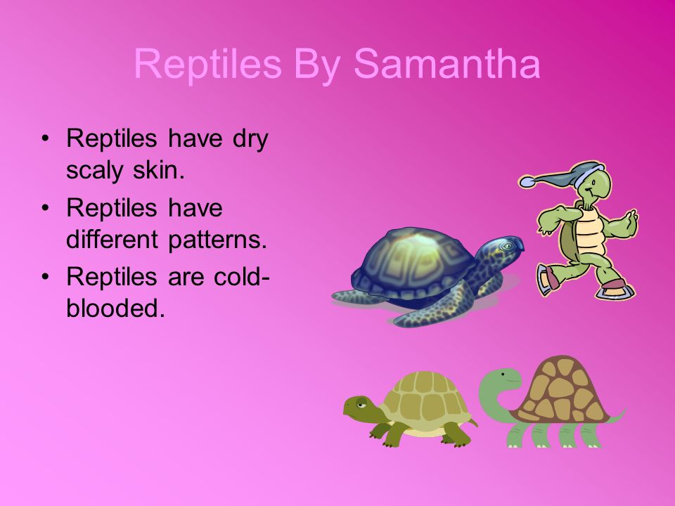 Reptiles By Samantha Reptiles have dry scaly skin. Reptiles have different patterns. Reptiles are cold- blooded.