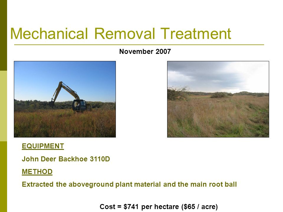 Mechanical Removal Treatment EQUIPMENT John Deer Backhoe 3110D METHOD Extracted the aboveground plant material and the main root ball November 2007 Cost = $741 per hectare ($65 / acre)