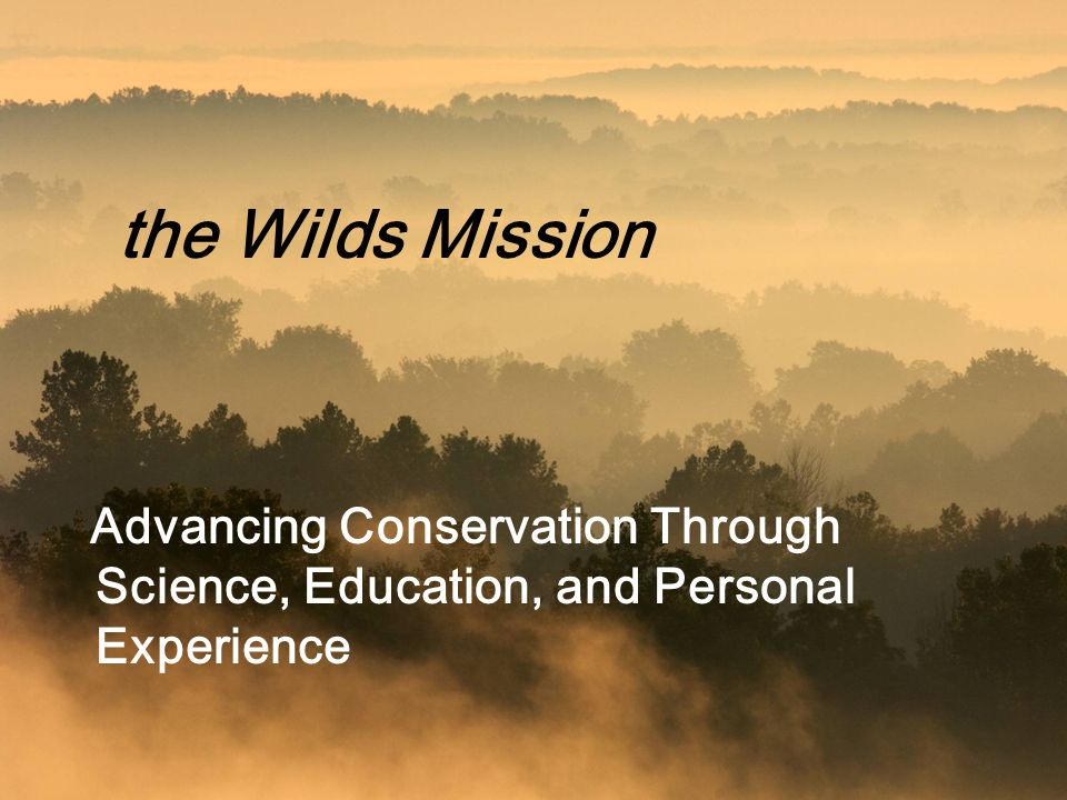 the Wilds Mission Advancing Conservation Through Science, Education, and Personal Experience