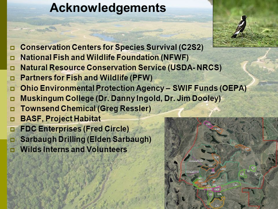 Acknowledgements Conservation Centers for Species Survival (C2S2) National Fish and Wildlife Foundation (NFWF) Natural Resource Conservation Service (USDA- NRCS) Partners for Fish and Wildlife (PFW) Ohio Environmental Protection Agency – SWIF Funds (OEPA) Muskingum College (Dr.