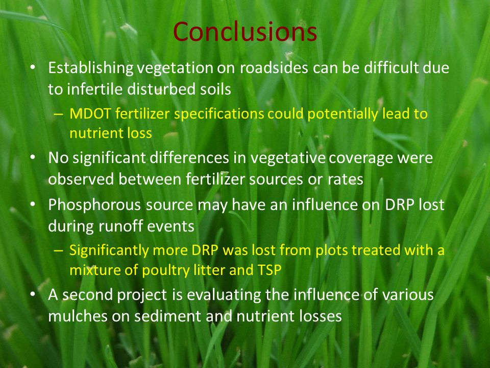 Conclusions Establishing vegetation on roadsides can be difficult due to infertile disturbed soils – MDOT fertilizer specifications could potentially lead to nutrient loss No significant differences in vegetative coverage were observed between fertilizer sources or rates Phosphorous source may have an influence on DRP lost during runoff events – Significantly more DRP was lost from plots treated with a mixture of poultry litter and TSP A second project is evaluating the influence of various mulches on sediment and nutrient losses