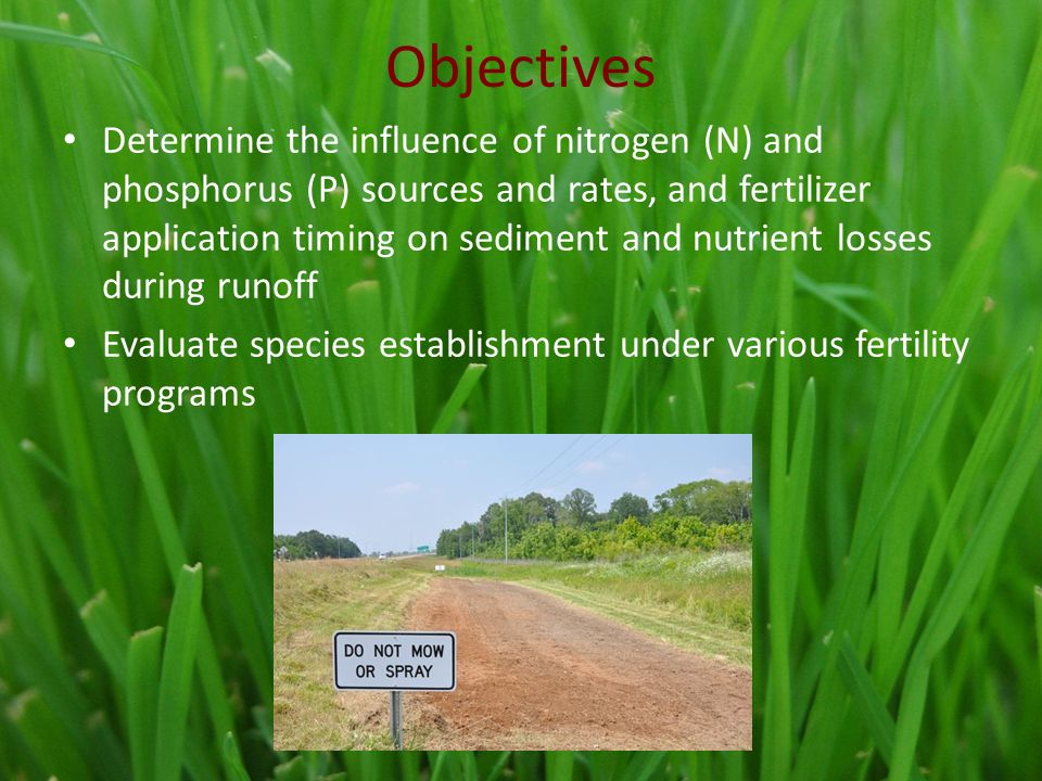 Objectives Determine the influence of nitrogen (N) and phosphorus (P) sources and rates, and fertilizer application timing on sediment and nutrient losses during runoff Evaluate species establishment under various fertility programs