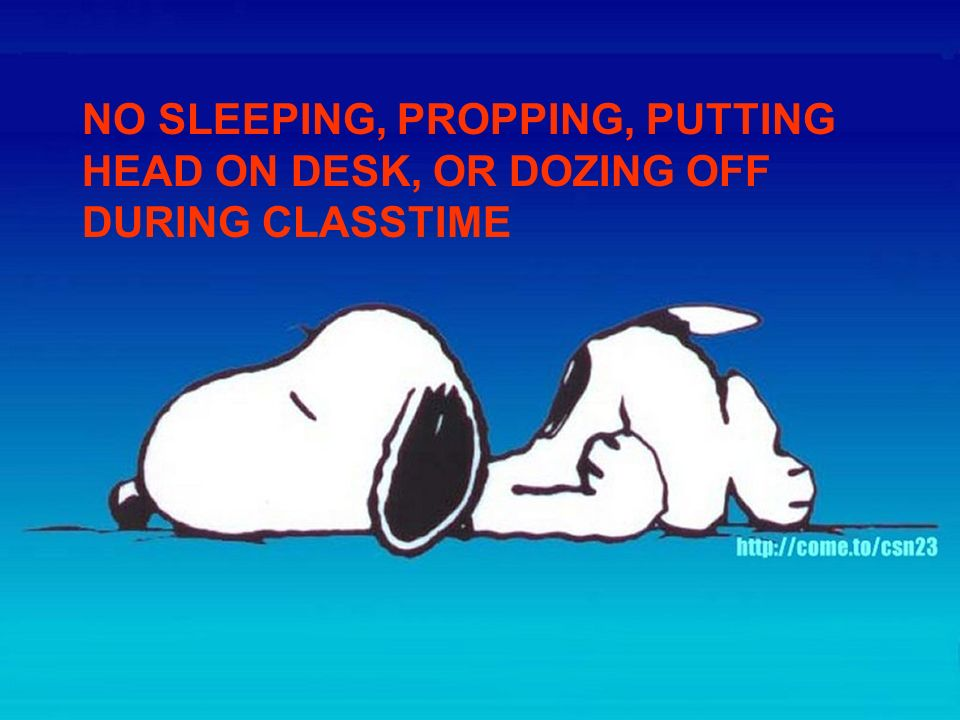 NO SLEEPING, PROPPING, PUTTING HEAD ON DESK, OR DOZING OFF DURING CLASSTIME