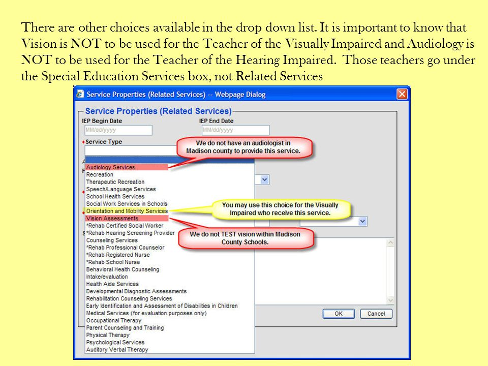 There are other choices available in the drop down list. It is important to know that Vision is NOT to be used for the Teacher of the Visually Impaire