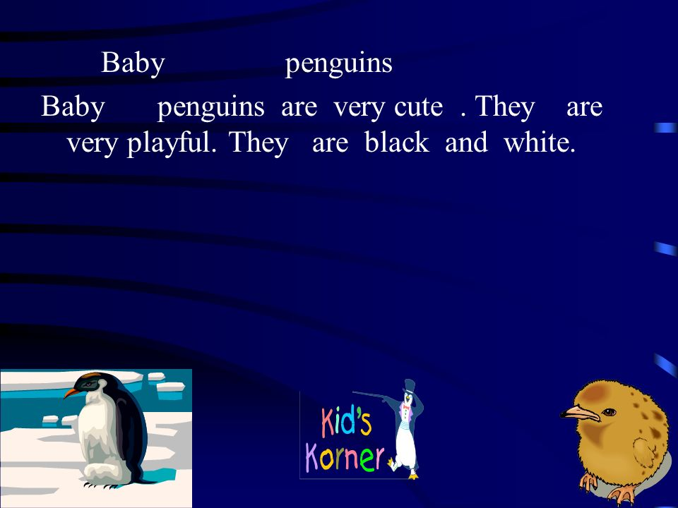 Mama penguins find the food.Then they throw it up and feed it to the babies.