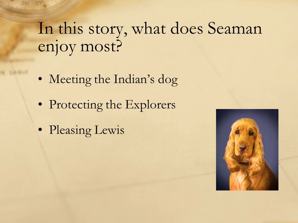 In this story, what does Seaman enjoy most? Meeting the Indians dog Protecting the Explorers Pleasing Lewis