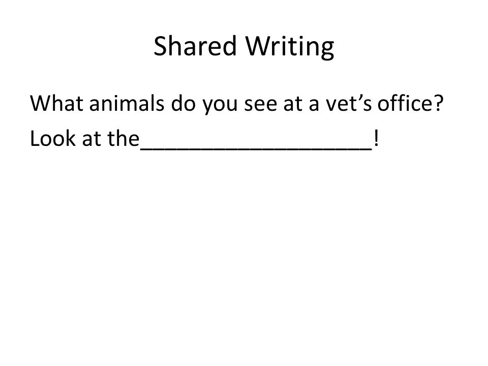 Shared Writing What animals do you see at a vets office? Look at the___________________!