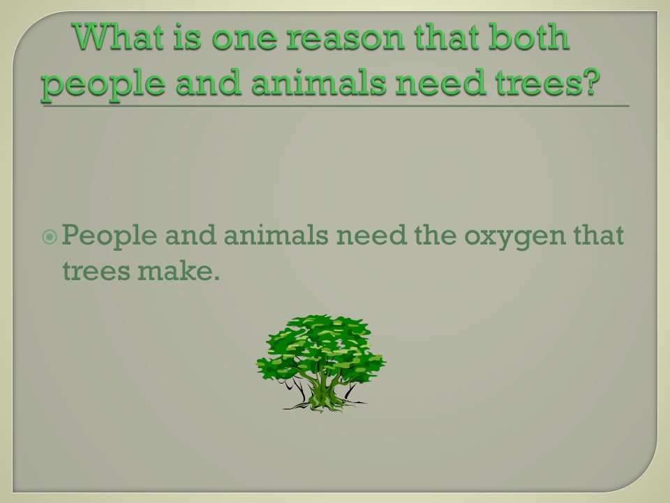 People and animals need the oxygen that trees make.