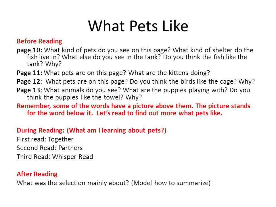 What Pets Like Before Reading page 10: What kind of pets do you see on this page? What kind of shelter do the fish live in? What else do you see in th