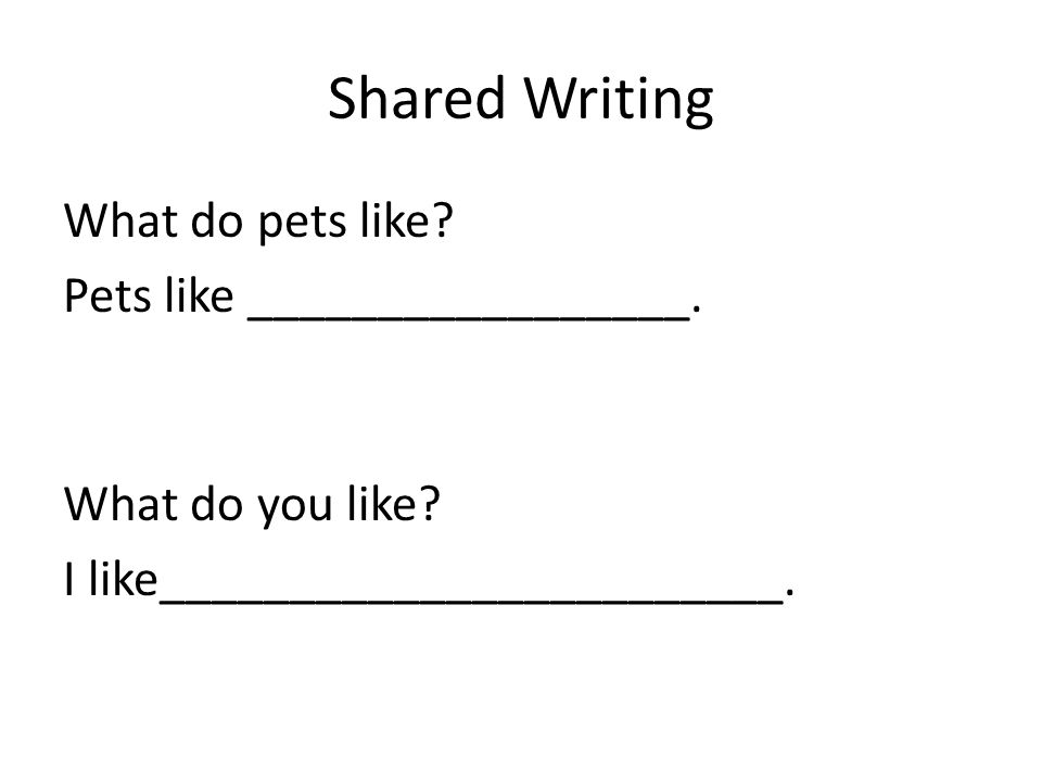 Shared Writing What do pets like? Pets like _________________. What do you like? I like________________________.