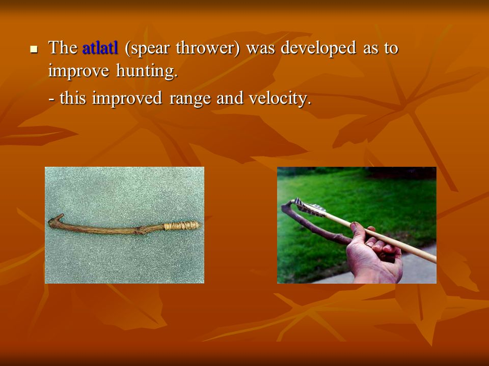 The atlatl (spear thrower) was developed as to improve hunting. The atlatl (spear thrower) was developed as to improve hunting. - this improved range
