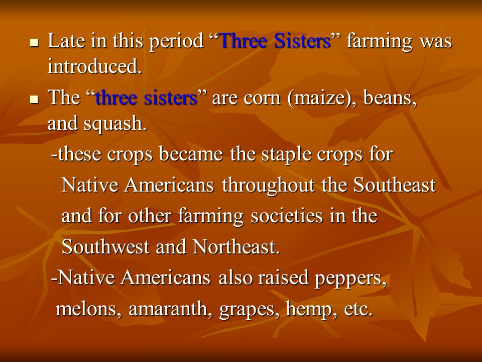 Late in this period Three Sisters farming was introduced. Late in this period Three Sisters farming was introduced. The three sisters are corn (maize)