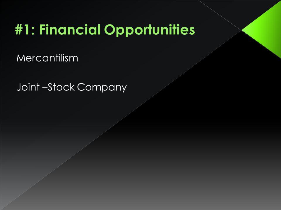 Mercantilism Joint –Stock Company