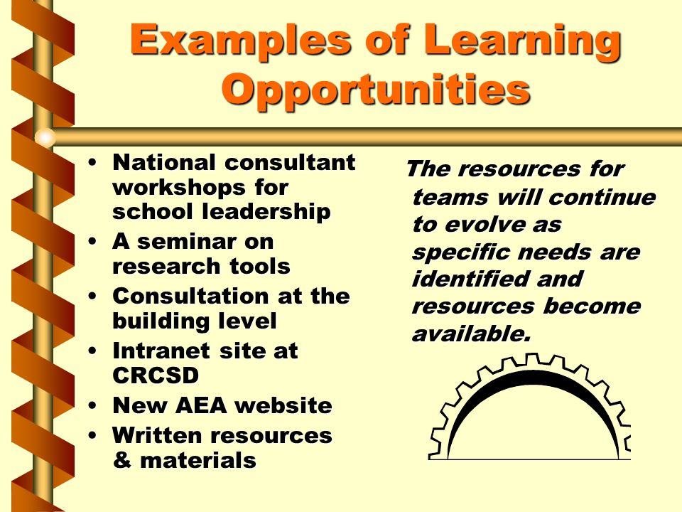 Examples of Learning Opportunities National consultant workshops for school leadershipNational consultant workshops for school leadership A seminar on