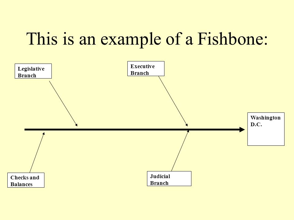 This is an example of a Fishbone: Washington D.C. Legislative Branch Executive Branch Checks and Balances Judicial Branch