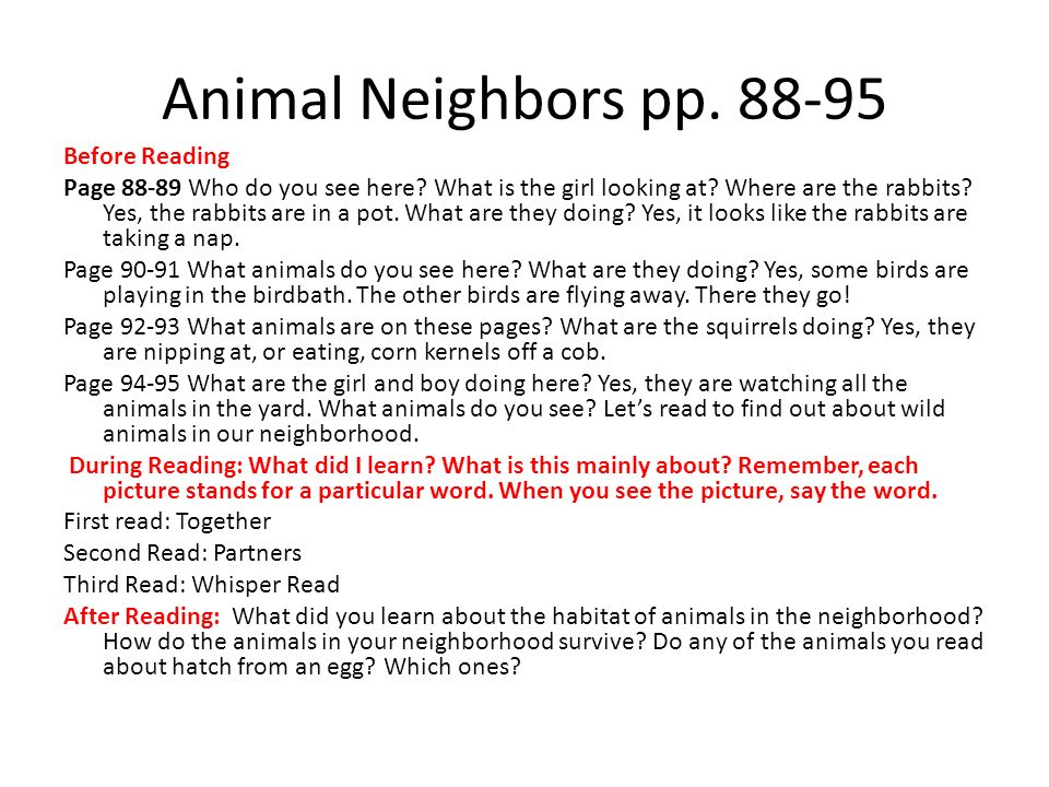 Animal Neighbors pp. 88-95 Before Reading Page 88-89 Who do you see here.