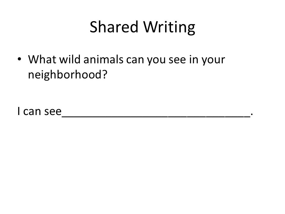 Shared Writing What wild animals can you see in your neighborhood.