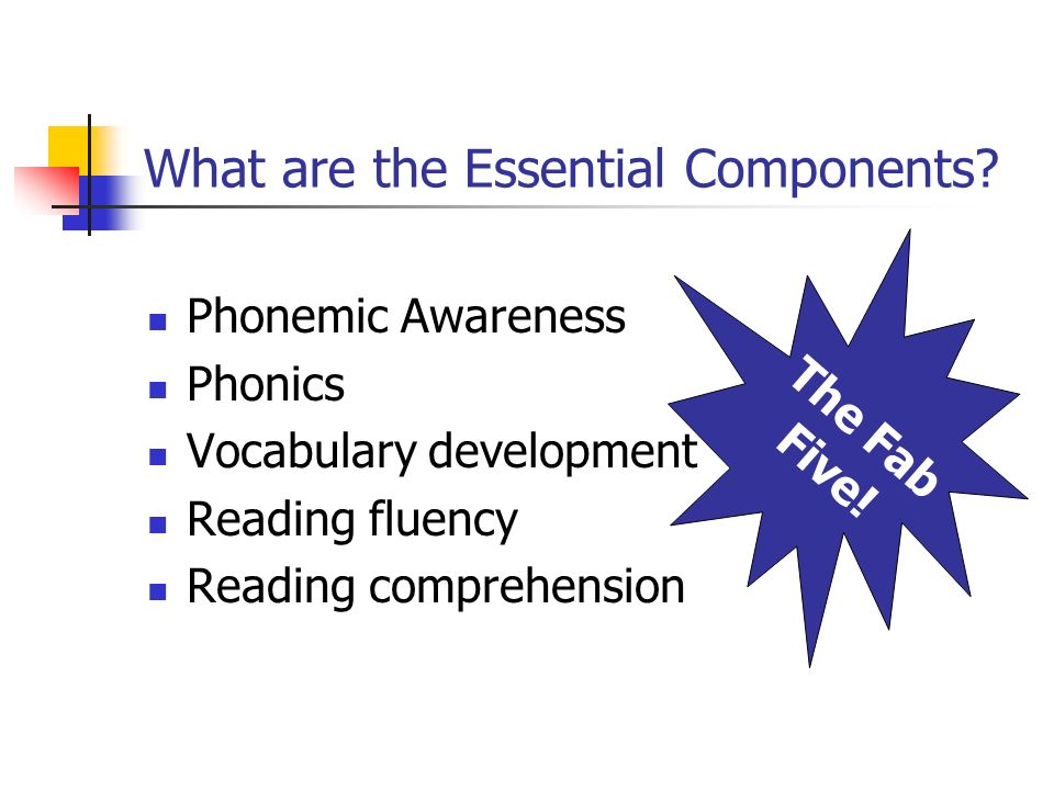 What are the Essential Components? Phonemic Awareness Phonics Vocabulary development Reading fluency Reading comprehension The Fab Five!