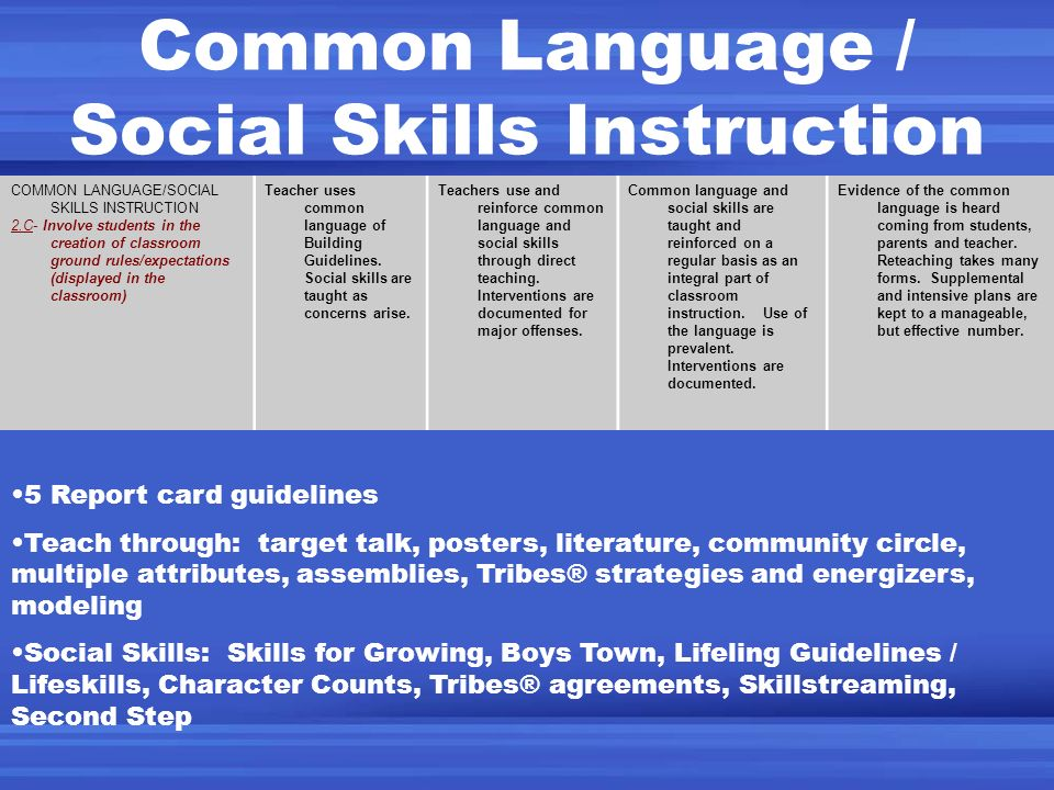 Common Language / Social Skills Instruction COMMON LANGUAGE/SOCIAL SKILLS INSTRUCTION 2.C- Involve students in the creation of classroom ground rules/