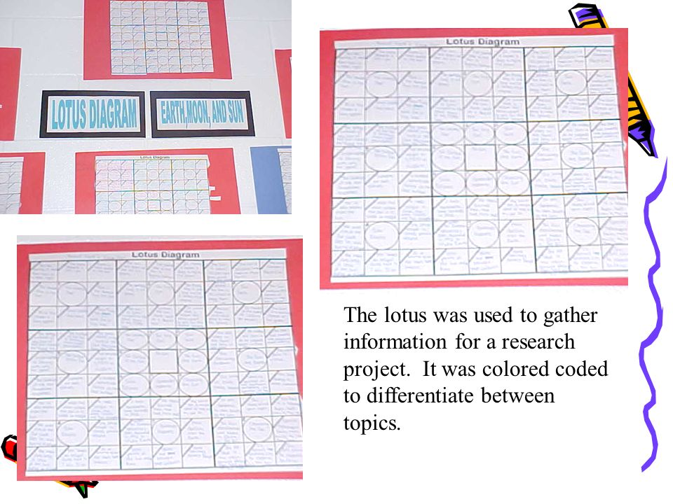 The lotus was used to gather information for a research project. It was colored coded to differentiate between topics.