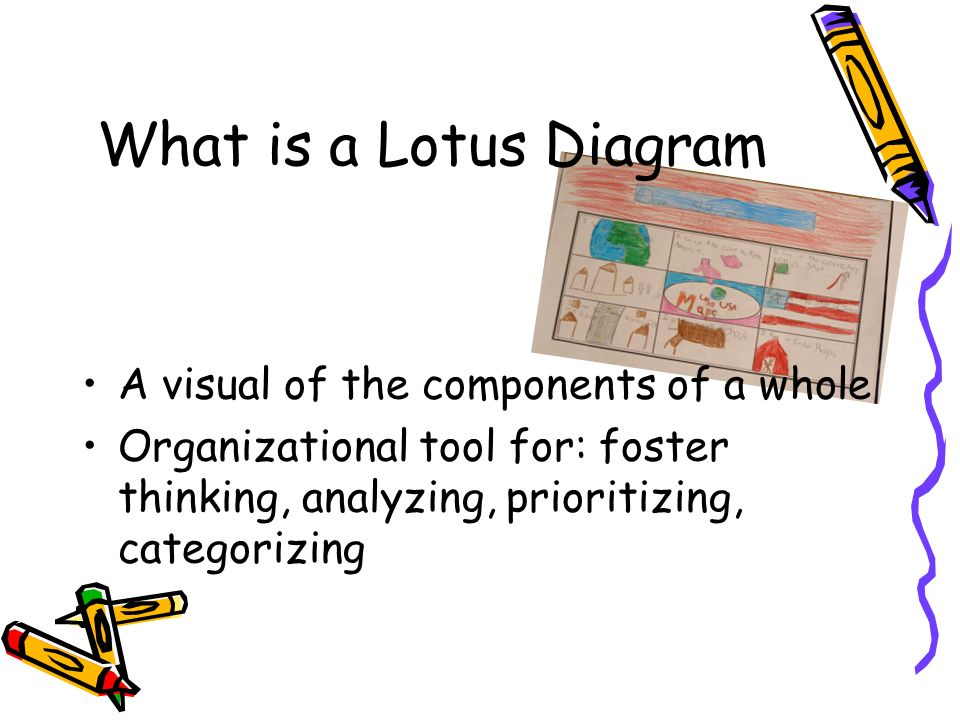 What is a Lotus Diagram A visual of the components of a whole Organizational tool for: foster thinking, analyzing, prioritizing, categorizing