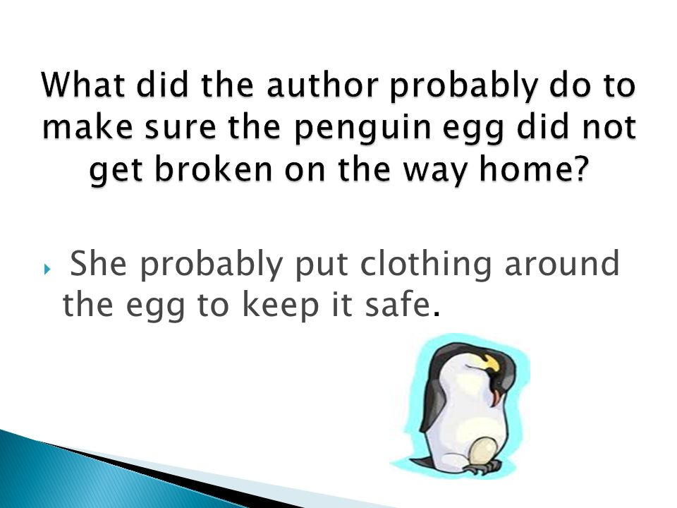 She probably put clothing around the egg to keep it safe.
