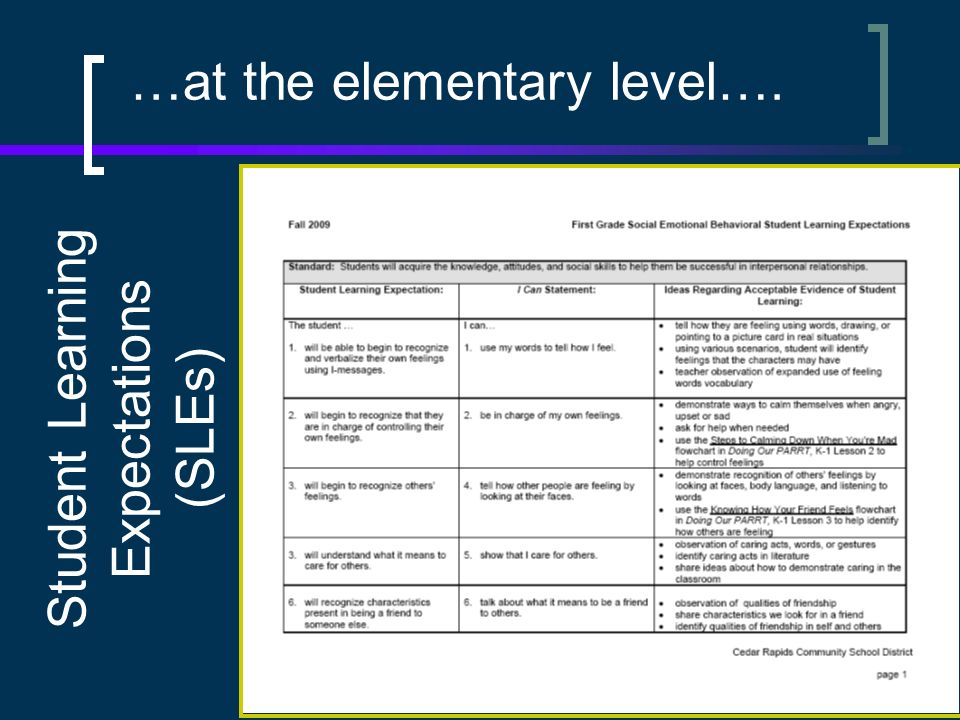 …at the elementary level…. Student Learning Expectations (SLEs)