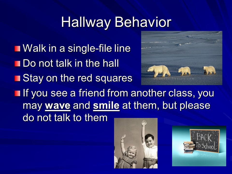 Hallway Behavior Walk in a single-file line Do not talk in the hall Stay on the red squares If you see a friend from another class, you may wave and s