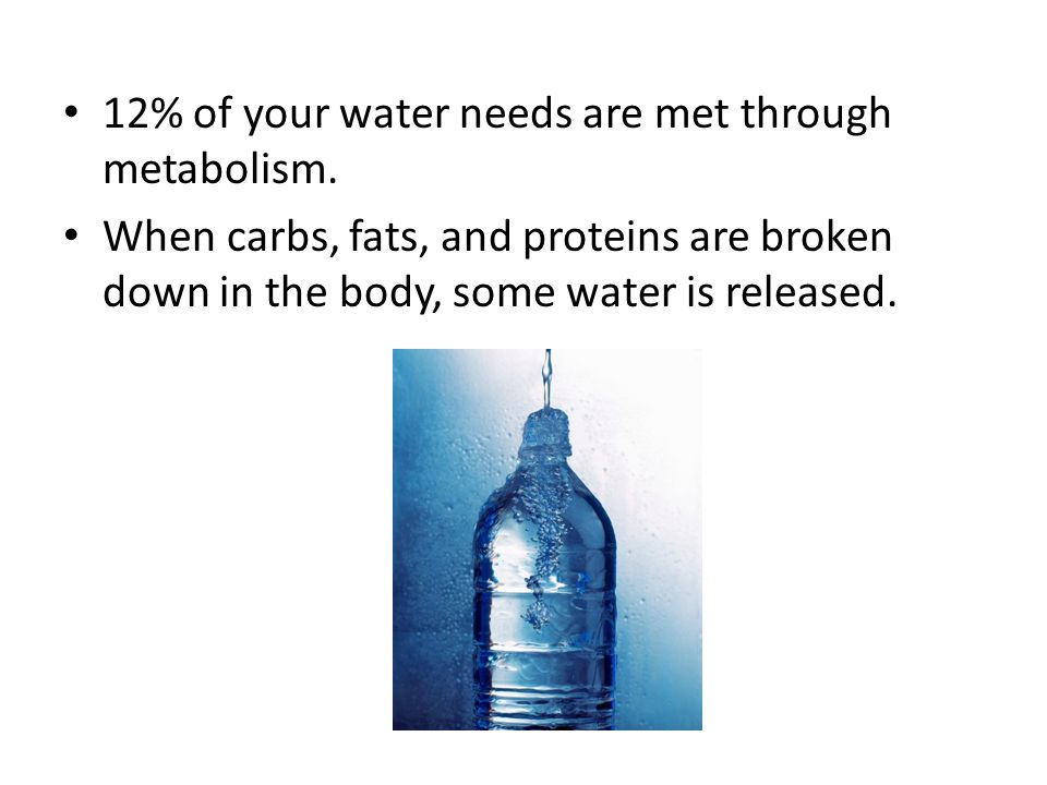 12% of your water needs are met through metabolism. When carbs, fats, and proteins are broken down in the body, some water is released.