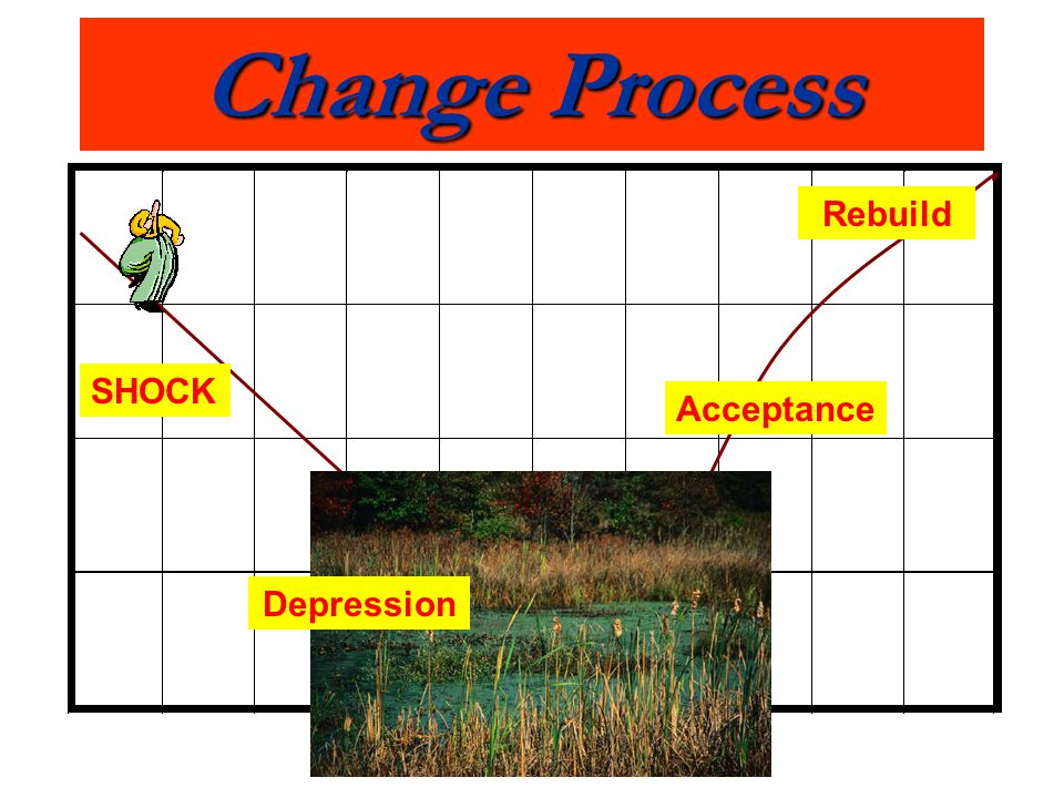 Change Process SHOCK Acceptance Rebuild Depression