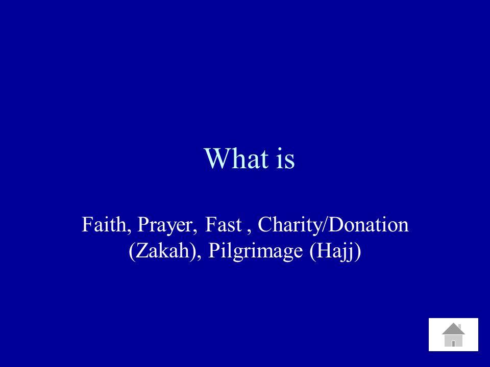 What is Faith, Prayer, Fast, Charity/Donation (Zakah), Pilgrimage (Hajj)