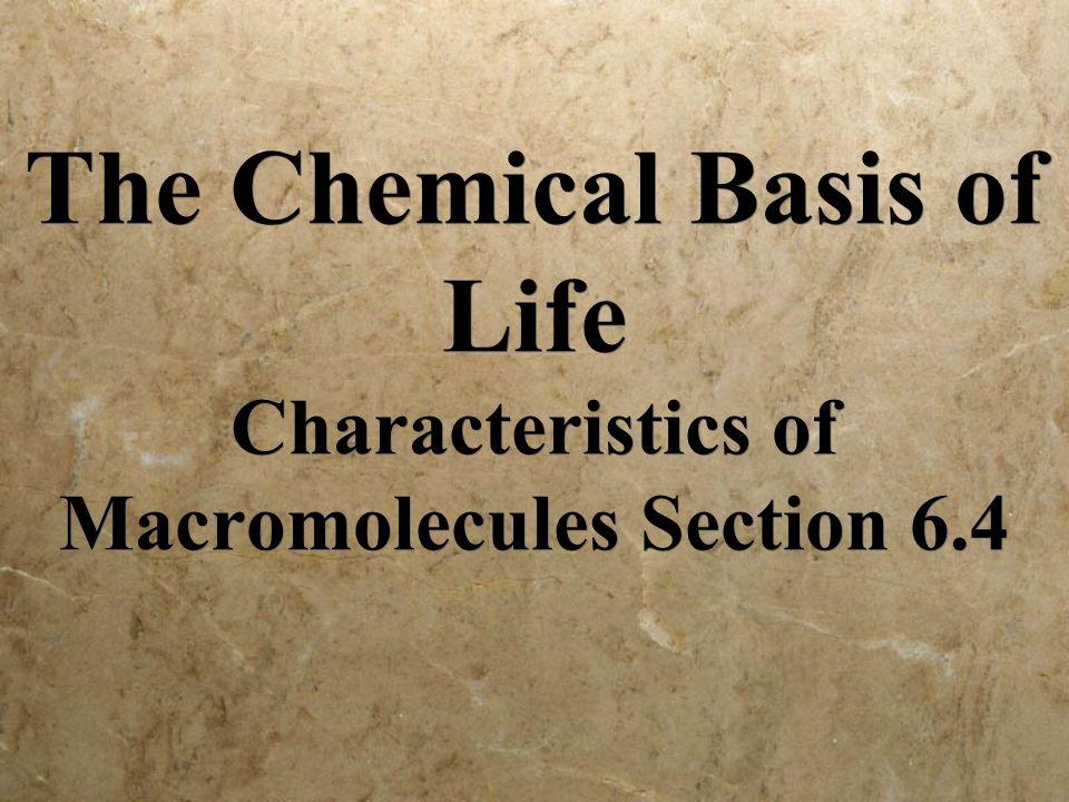 Monomers: nucleic acids RNA: ribonucleic acid DNA: deoxyribonucleic acid RNA: ribonucleic acid DNA: deoxyribonucleic acid