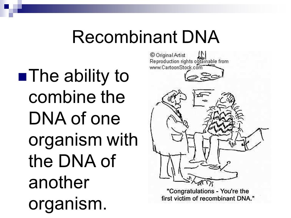 Recombinant DNA The ability to combine the DNA of one organism with the DNA of another organism.