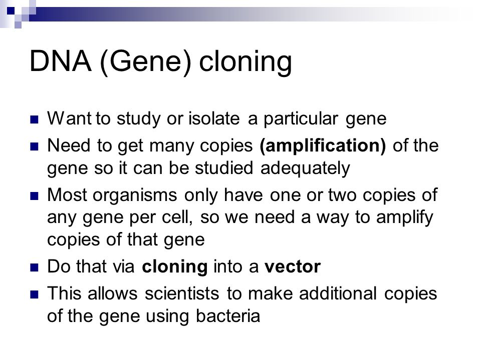 DNA (Gene) cloning Want to study or isolate a particular gene Need to get many copies (amplification) of the gene so it can be studied adequately Most