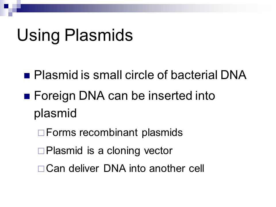 Using Plasmids Plasmid is small circle of bacterial DNA Foreign DNA can be inserted into plasmid Forms recombinant plasmids Plasmid is a cloning vecto