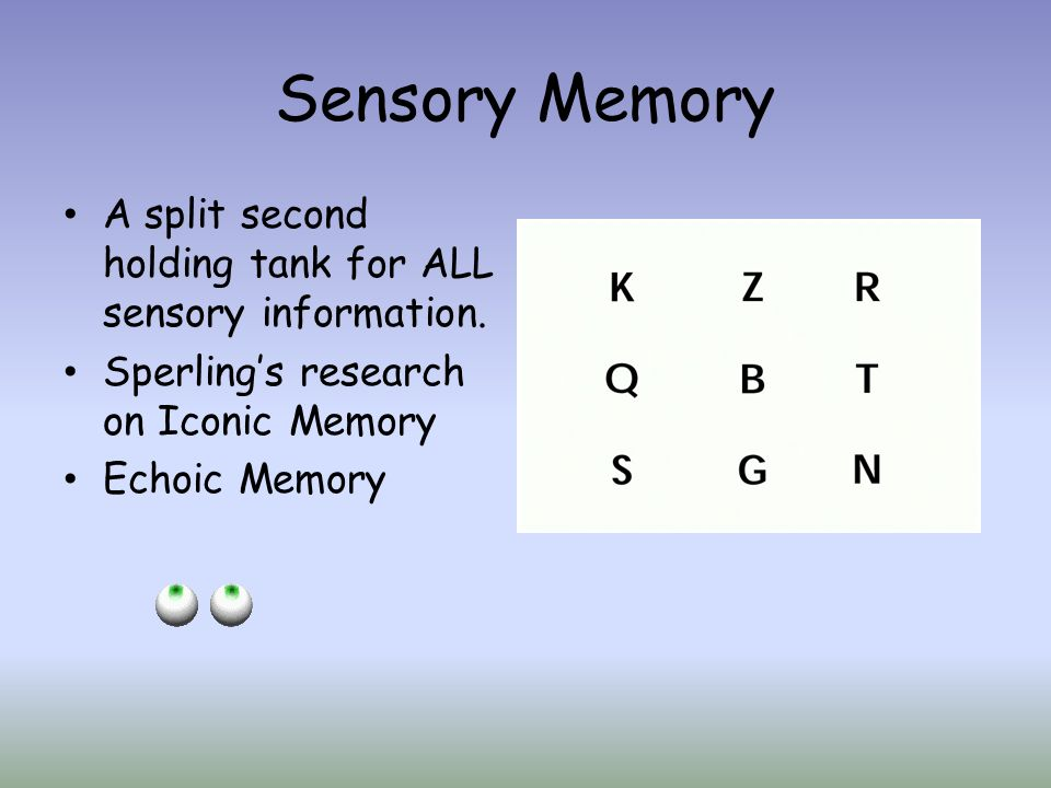 Sensory Memory A split second holding tank for ALL sensory information. Sperlings research on Iconic Memory Echoic Memory