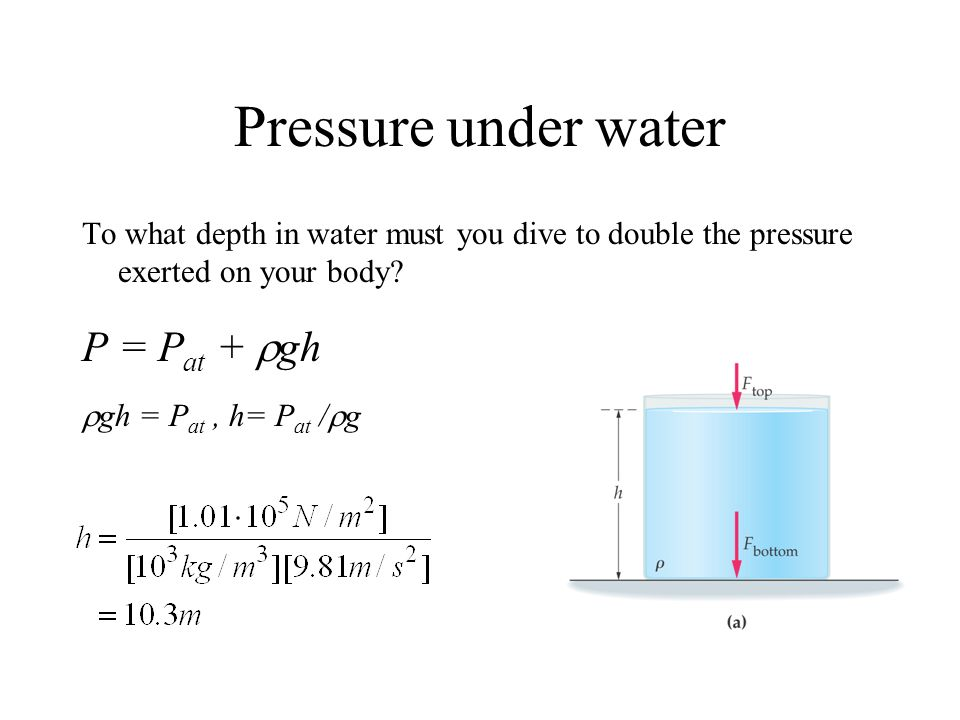 Pressure under water To what depth in water must you dive to double the pressure exerted on your body? P = P at + gh gh = P at, h= P at / g