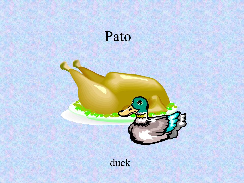 Pato duck Your AccountYour Account | Magazine Subscriptions | Catalog Requests | About MSO | Career Opportunities | Investor Relations Privacy Policy