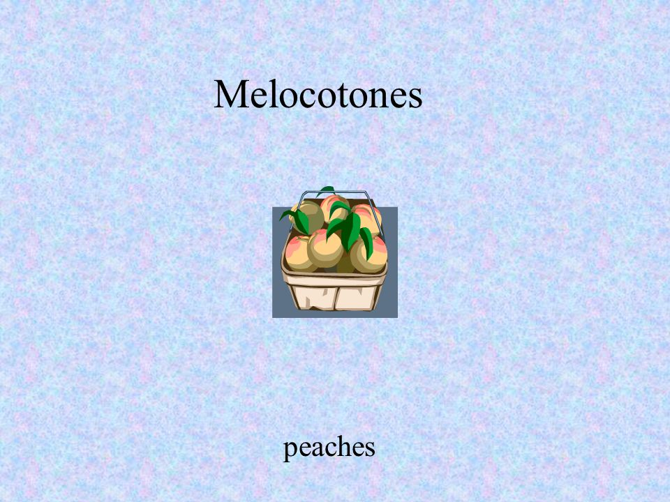 Melocotones peaches Your AccountYour Account | Magazine Subscriptions | Catalog Requests | About MSO | Career Opportunities | Investor Relations Priva