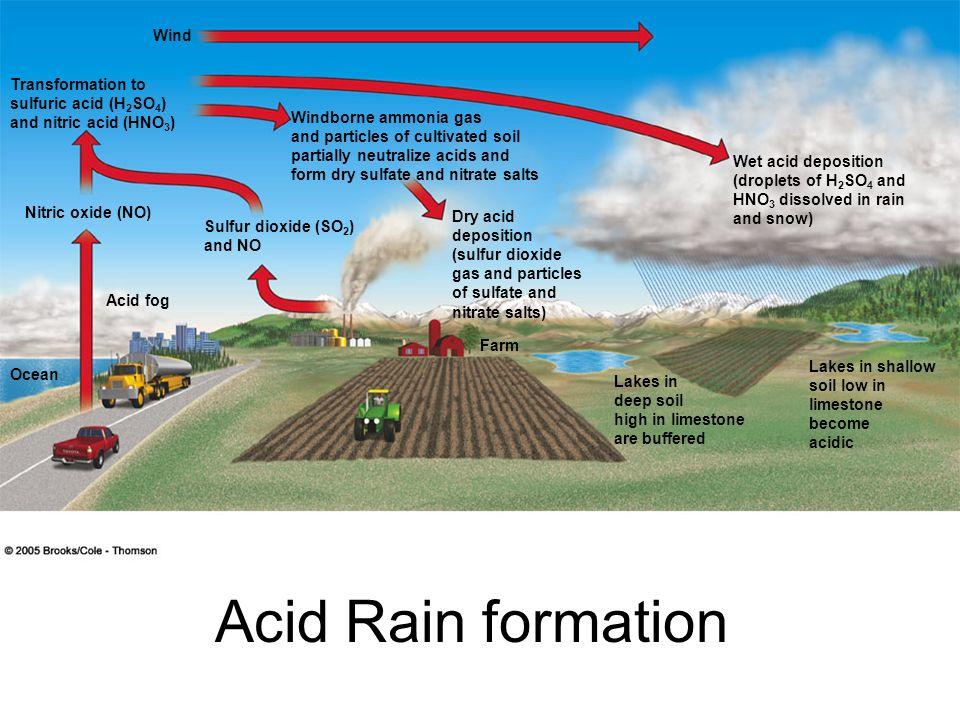 Wind Transformation to sulfuric acid (H 2 SO 4 ) and nitric acid (HNO 3 ) Nitric oxide (NO) Acid fog Ocean Sulfur dioxide (SO 2 ) and NO Windborne amm