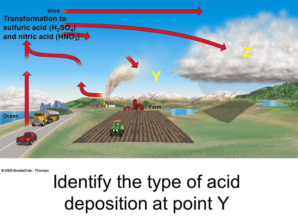 Wind Ocean Farm Identify the type of acid deposition at point Y Y Z Transformation to sulfuric acid (H 2 SO 4 ) and nitric acid (HNO 3 )