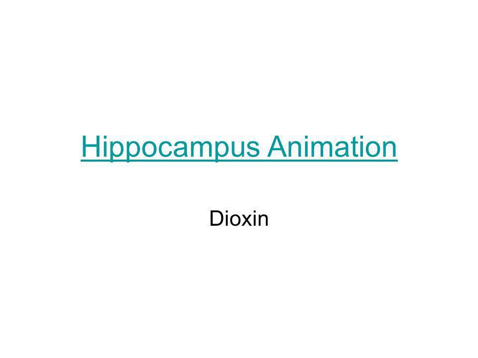 Hippocampus Animation Incinerator