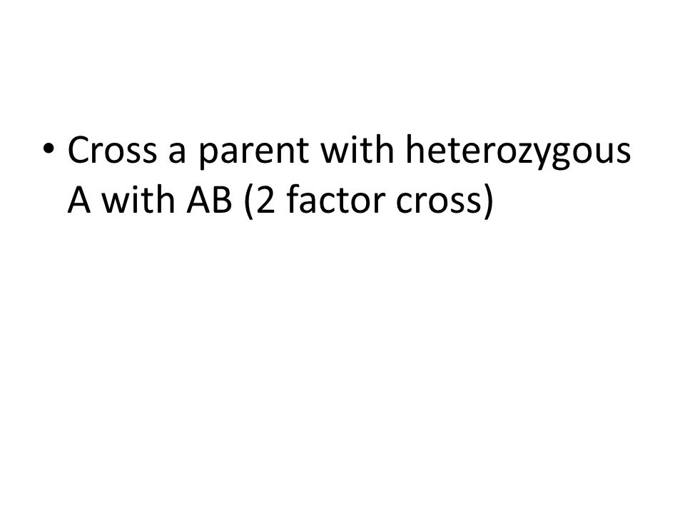 Cross a parent with heterozygous A with AB (2 factor cross)