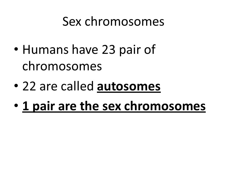 Sex chromosomes Humans have 23 pair of chromosomes 22 are called autosomes 1 pair are the sex chromosomes