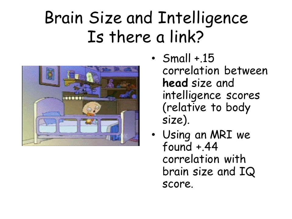 Brain Size and Intelligence Is there a link? Small +.15 correlation between head size and intelligence scores (relative to body size). Using an MRI we
