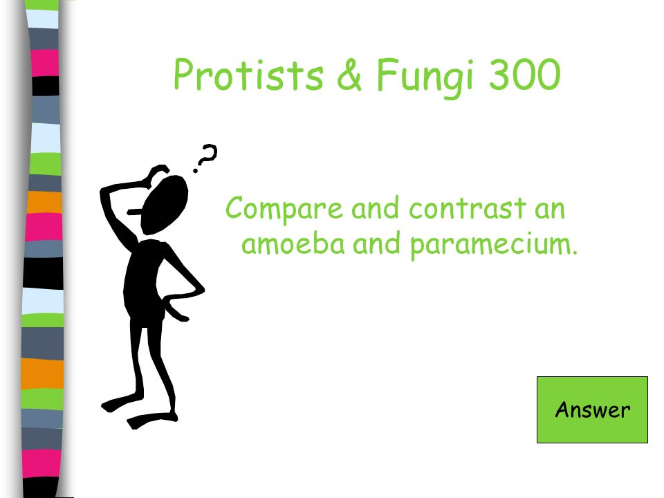 Protists & Fungi 300 Compare and contrast an amoeba and paramecium. Answer