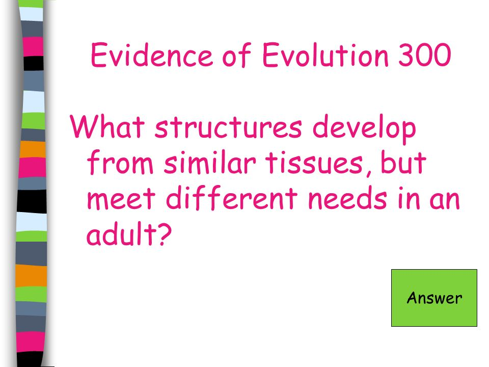 Evidence of Evolution 300 What structures develop from similar tissues, but meet different needs in an adult? Answer